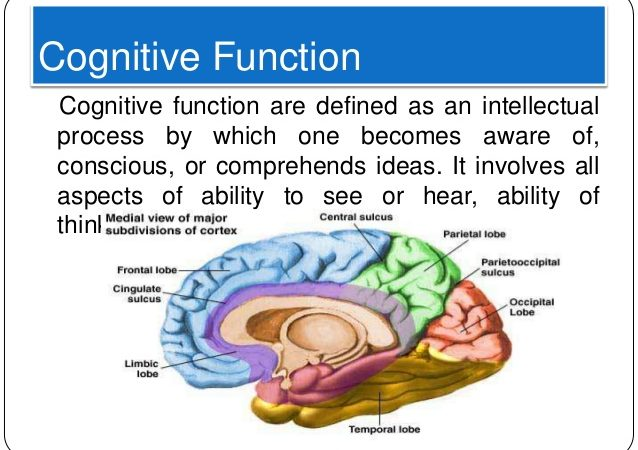 Cognitive Functions: Illustrating the Te/Fi Axis