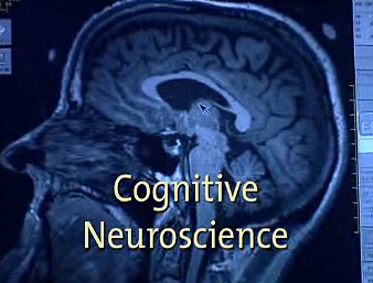Master's course in Cognitive Science & Cognitive Neuroscience track (CNS) – Massimiliano Zampini